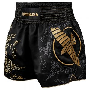 Hayabusa Falcon Muay Thai Shorts