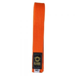Kingz Kids Belts Solid Colour Orange